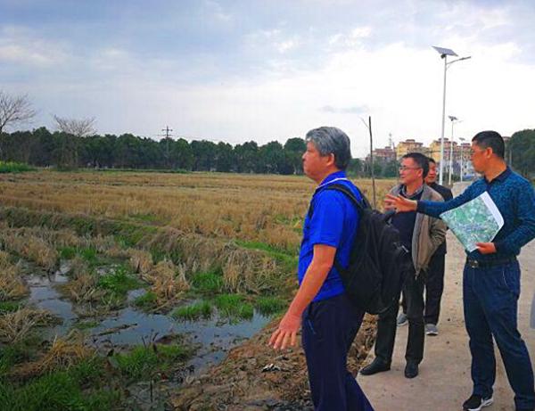 民革芜湖市委会为引进台湾农业科技带动乡村脱贫牵线搭桥