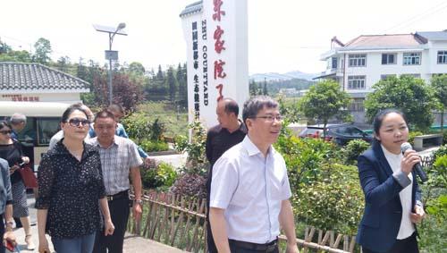 """重庆:""""乡村振兴实施路径""""综合调研活动"""